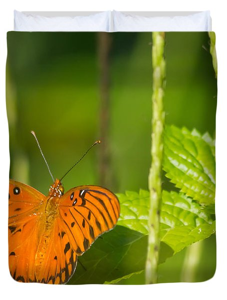 Duvet Cover featuring the photograph Gulf Fritillary by Jane Luxton