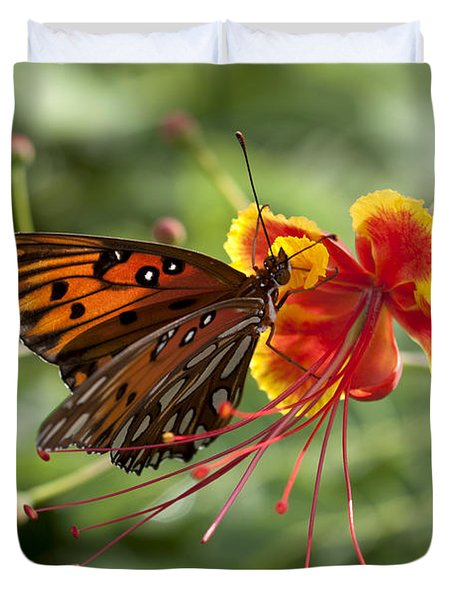 Duvet Cover featuring the photograph Gulf Fritillary Photo by Meg Rousher