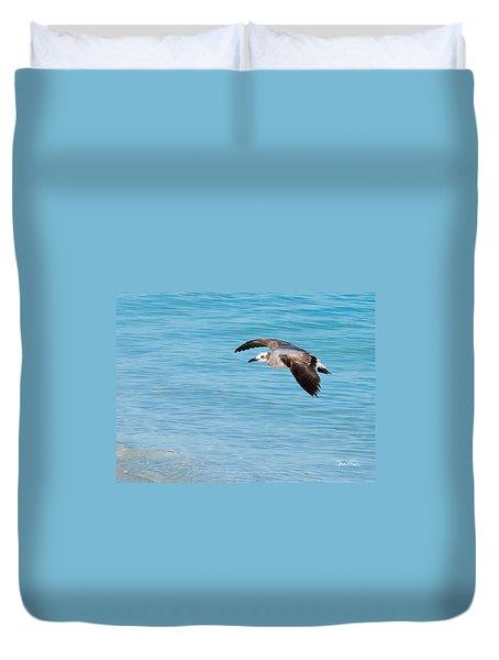 Gull At Lido Beach IIi Duvet Cover by Susan Molnar