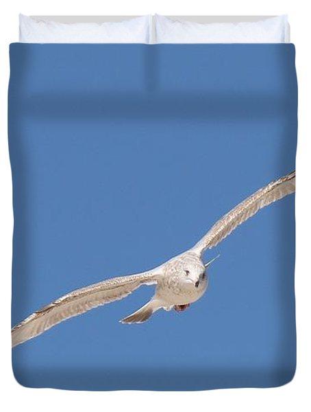 Gull In Flight - 2 Duvet Cover
