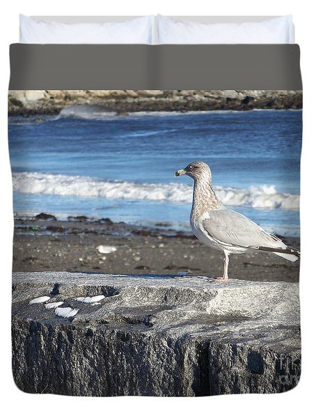 Duvet Cover featuring the photograph Seagull  by Eunice Miller