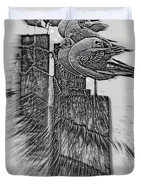 Gulls In Pencil Effect Duvet Cover by Linsey Williams