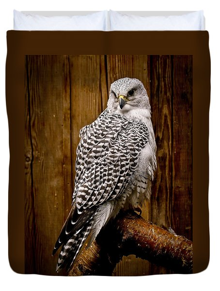 Gyrfalcon Perched Duvet Cover