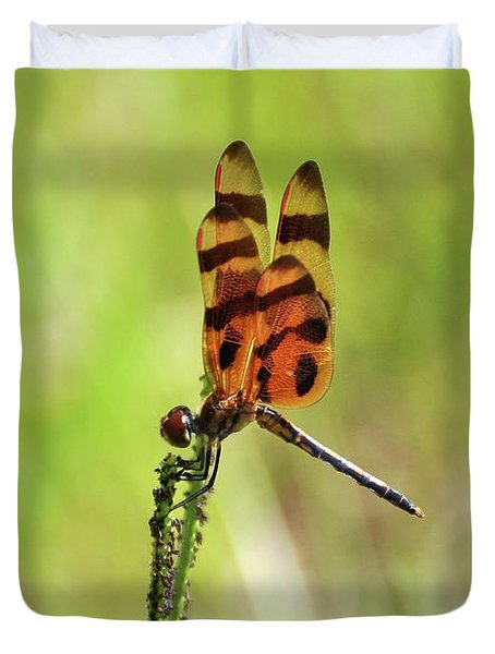 Halloween Pennant Duvet Cover by Al Powell Photography USA