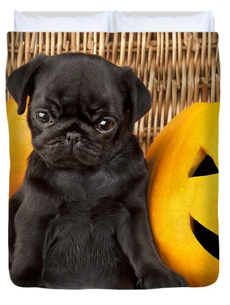 Halloween Pug Duvet Cover by Greg Cuddiford