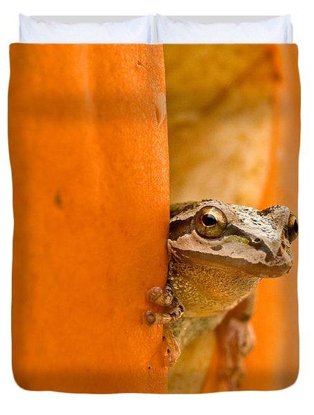 Halloween Surprise  Duvet Cover by Jean Noren