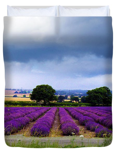 Hampshire Lavender Field Duvet Cover by Terri Waters