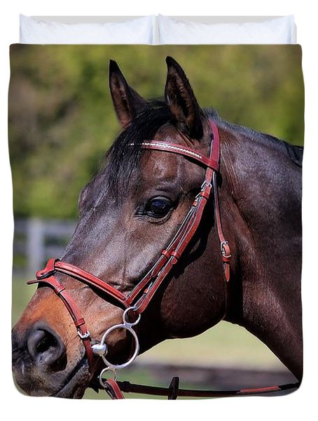 Handsome Gelding Duvet Cover