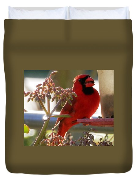 Handsome Red Male Cardinal Visiting Duvet Cover