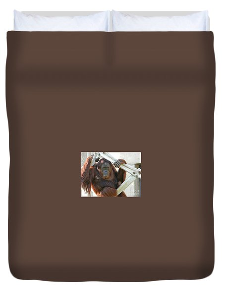 Duvet Cover featuring the photograph Hanging Out - Melati The Orangutan by Emmy Marie Vickers