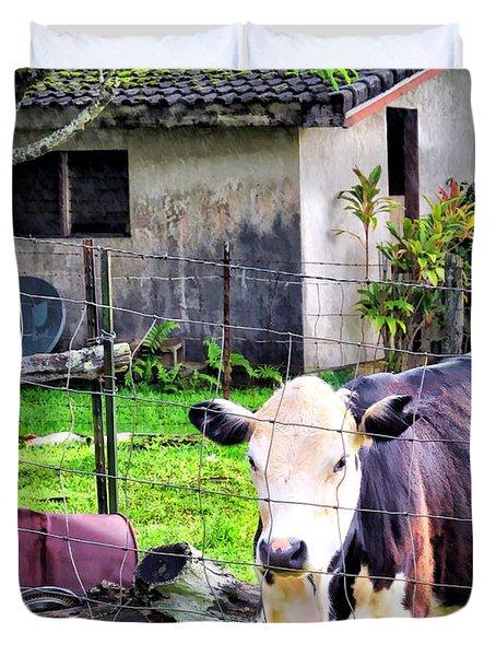 Duvet Cover featuring the photograph Hanzawa Cow 1 by Dawn Eshelman
