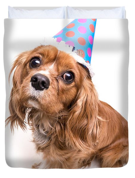 Happy Birthday Puppy Duvet Cover by Edward Fielding