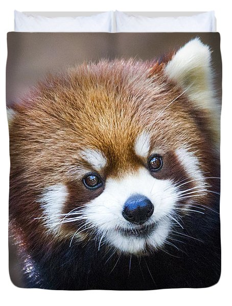Happy Red Panda Duvet Cover