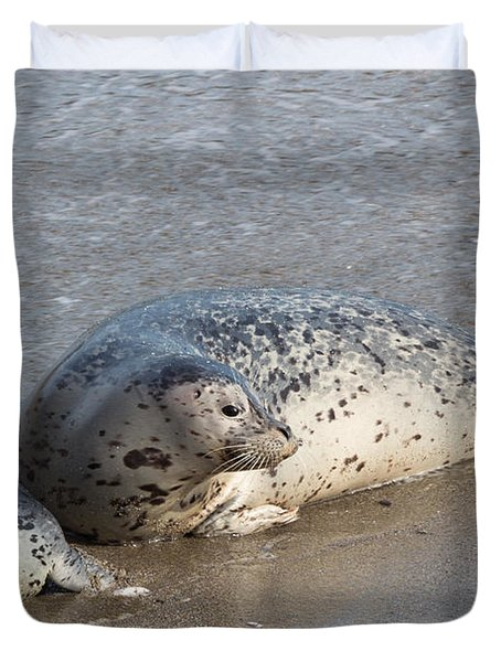 Harbor Seals In The Surf Duvet Cover