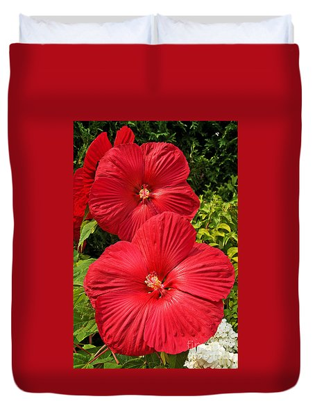 Hardy Hibiscus Duvet Cover by Sue Smith