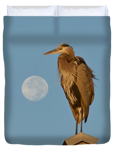 Duvet Cover featuring the photograph Harry The Heron Ponders A Trip To The Full Moon by Jeff at JSJ Photography