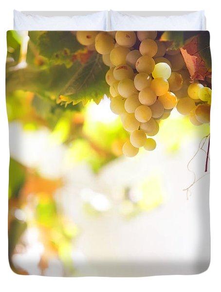 Harvest Time. Sunny Grapes I Duvet Cover by Jenny Rainbow