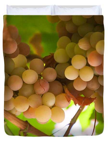 Harvest Time. Sunny Grapes II Duvet Cover by Jenny Rainbow