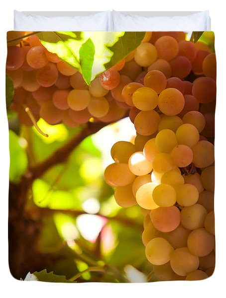 Harvest Time. Sunny Grapes IIi Duvet Cover by Jenny Rainbow