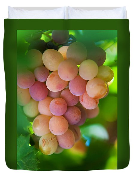Harvest Time. Sunny Grapes Duvet Cover by Jenny Rainbow
