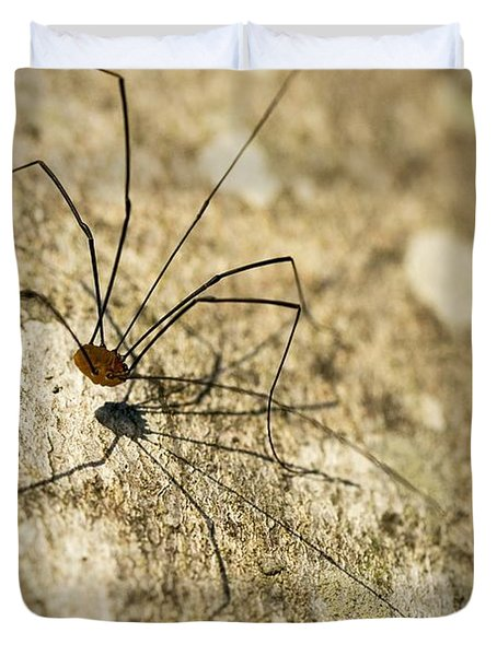 Duvet Cover featuring the photograph Harvestman Spider by Chevy Fleet