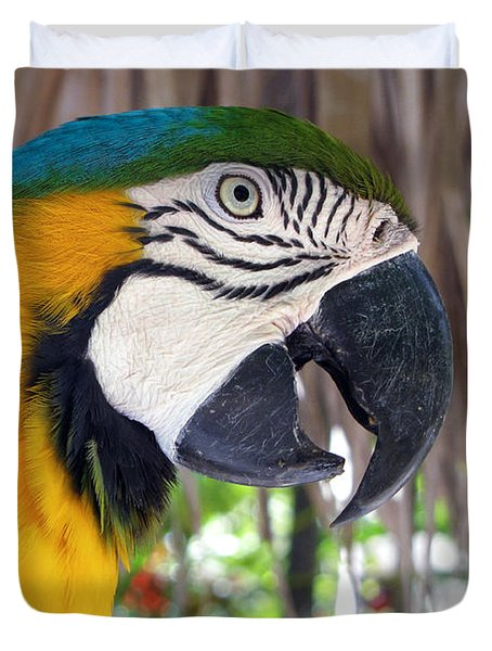 Harvey The Parrot 2 Duvet Cover