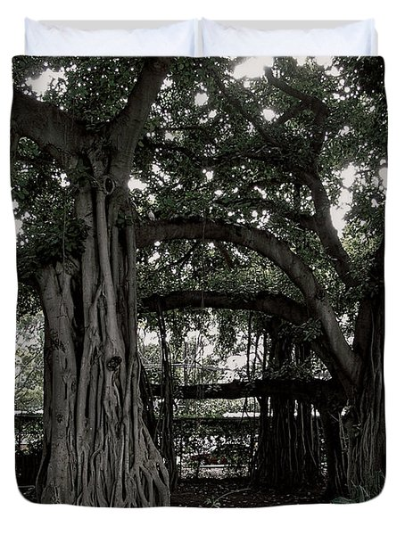 Hawaiian Banyan Trees Duvet Cover by Daniel Hagerman