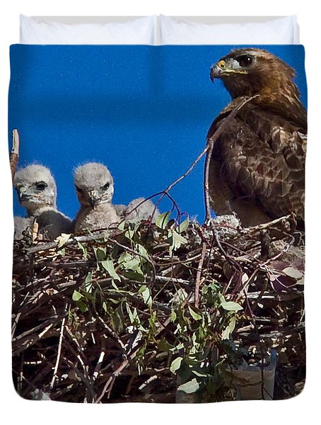 Duvet Cover featuring the photograph Hawk Babies by Brian Williamson