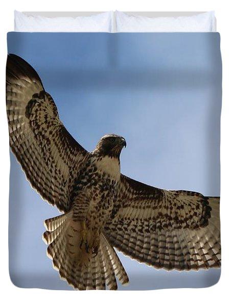 Hawk In Flight  Duvet Cover