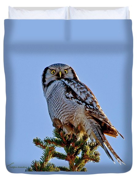 Hawk Owl Square Duvet Cover by Torbjorn Swenelius