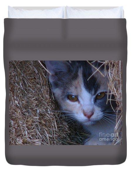 Haystack Cat Duvet Cover