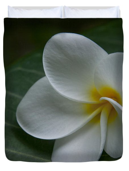 He Aloha No O Waianapanapa - White Tropical Plumeria - Maui Hawaii Duvet Cover by Sharon Mau