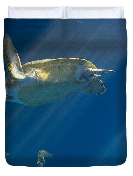 Heavenly Turtle Duvet Cover