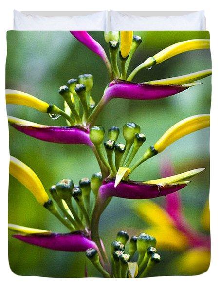 Heliconia Subulata II Duvet Cover