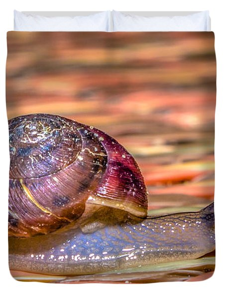 Duvet Cover featuring the photograph Helix Aspersa by Rob Sellers