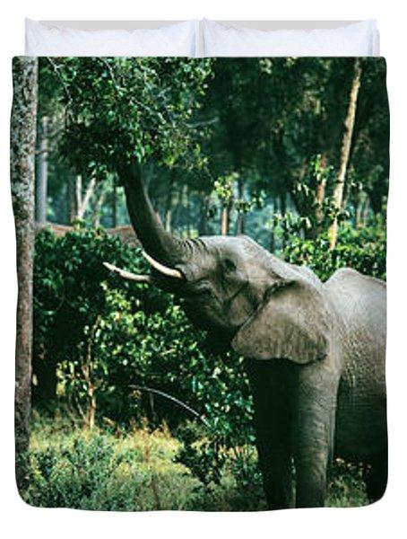 Herd Of Elephants Maasai Mara National Duvet Cover