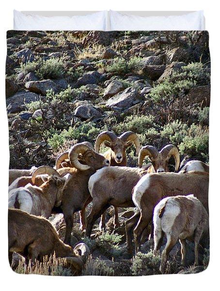 Herd Of Horns Duvet Cover