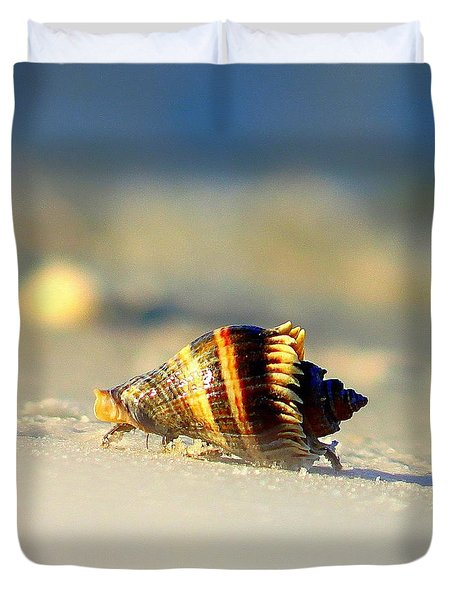 Hermit Crab  Duvet Cover by Debra Forand