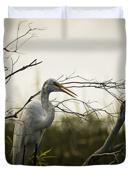 Heron At Dusk Duvet Cover by Bradley R Youngberg