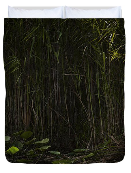 Heron In Grass Duvet Cover by Bradley R Youngberg
