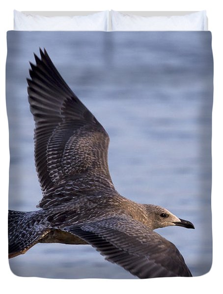 Duvet Cover featuring the photograph Herring Gull In Flight Photo by Meg Rousher