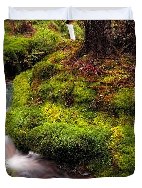 Hidden Woodland Corner. Benmore Botanical Garden. Scotland Duvet Cover by Jenny Rainbow