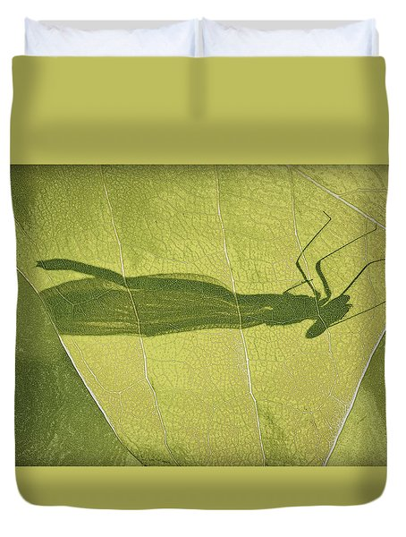Hide And Seek Dragon..fly  Duvet Cover