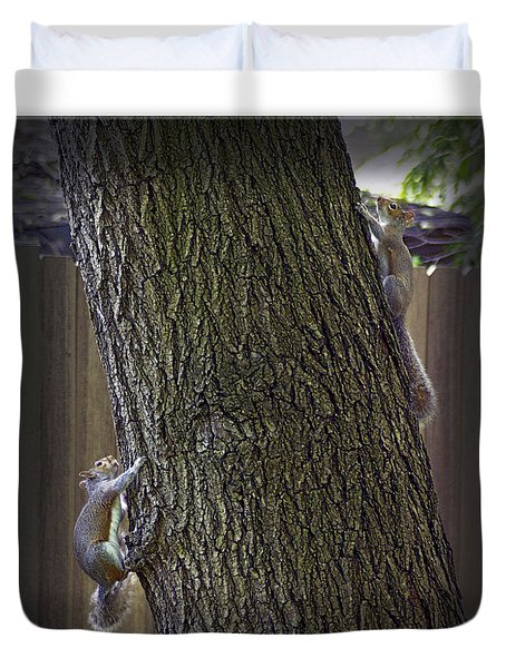 Hide And Seek Squirrels Duvet Cover by Brian Wallace