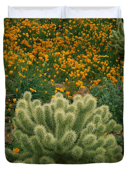 High Angle View Of Mexican Gold Poppies Duvet Cover