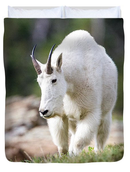 Duvet Cover featuring the photograph High Country Mountain Goat by Jack Bell