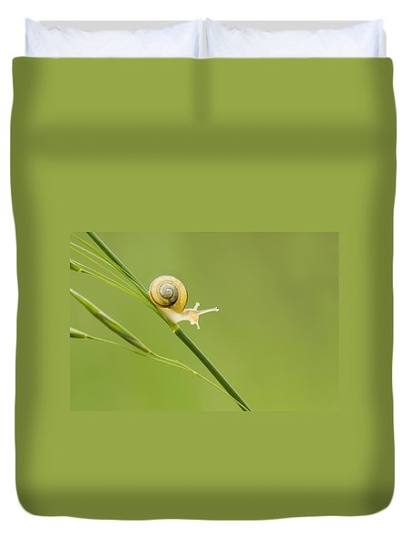 High Speed Snail Duvet Cover