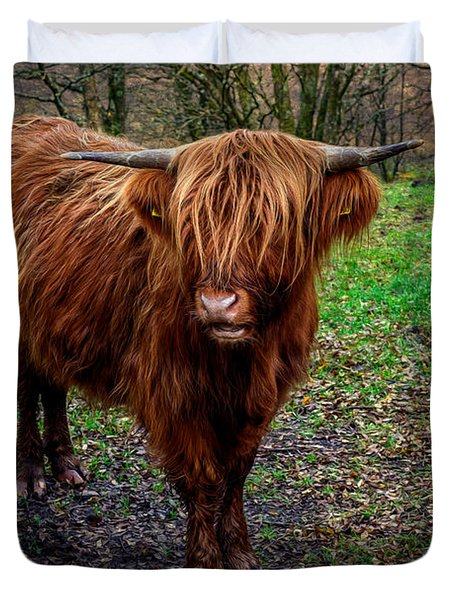Highland Beast  Duvet Cover by Adrian Evans