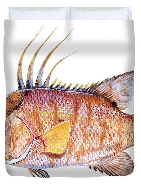 Hog Fish Duvet Cover