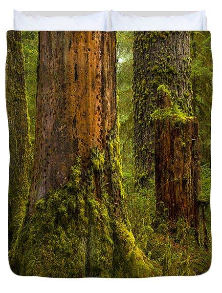 Hoh Rainforest 1 Duvet Cover